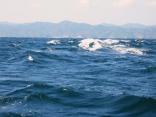 9月30日 北北西10m 波の高さ2.0m 品木の海の様子