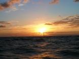 品木の海から望む 朝日