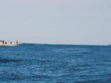 壱岐・福岡からかな 遠い所から大変です 外国船も通過中 化けもんのポイントです。