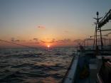 今日の天気 良い釣り日よりです