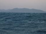 強風波浪乾燥注意報 北西の風13m 白波が立ってきました