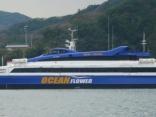 韓国 大亜高速海運 オーシャンフラワー