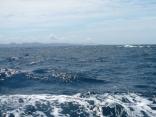南西の風12m 波の高さ1.4m