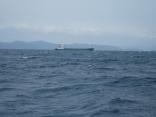 南西の風9m 波の高さ 0.9m
