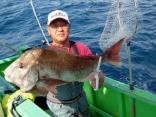 真鯛 8.5kg 三枚堂さん