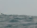 西の風17m波の高さ1.7m 早めに帰港へ