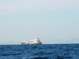 釜山行きのコンテナ船 韓国の山 見えていますか