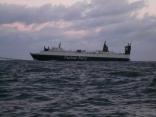 早朝から 本船の近くを通過します