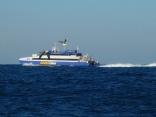高速艇とカモメ2羽