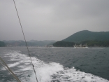 上対馬町比田勝港 今から漁協へイカの水揚げ順番待ちです。