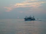日の出と共にイカ釣り船が帰港です 本船出漁へ