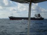 今日は韓国の貨物船近くを通過します