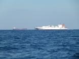今日は いつもより 外国船 通過が多いです