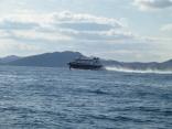 本船はやめに帰港へ 今日の高速艇ビートル