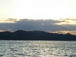 今日は漁師さんに混じってサワラ狙い・ジギングした為 帰りが5時近く成りました