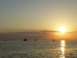 イカ釣り船の帰港