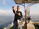 白イカ釣りの風景