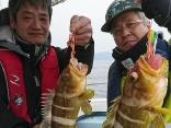 根魚爆釣です!