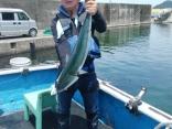 釣果5月26日午後便 真鯛82㎝2枚、80㎝1枚、68㎝1枚、マダイは合計17枚