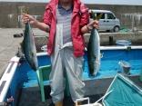 釣果5月28日午前便 ヒラマサ65センチワラサ65センチ