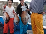 釣果5月2日午前便 真鯛80cmや70cmなどを含めて、なんと58枚