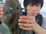 マダイふかせ釣りでうれしい外道に良型のウマズラハギ⁉
