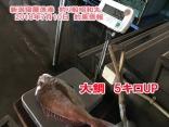 7月10日鯛ラバ5Kオーバーの大鯛