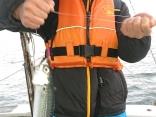 船釣り初体験でファーストヒットは大サバ❣