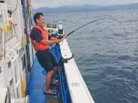 ノマセ釣り ファイトシーン