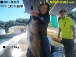 嬉野市前田さんG ●アラ16kg