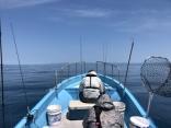 晴天の中での釣行