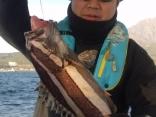 樋渡さんがGETしたこの魚はいったい…?