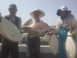 釣果:マダイ6kgとヒラメ5.5kg