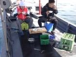 新鮮な魚を刺身と味噌汁に☆サービスTIME
