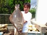 ヒラメ 7.3kg