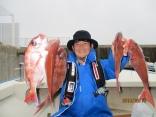 笹部さん たい5匹