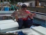 真鯛3.5キロ