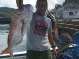 真鯛2.7キロ
