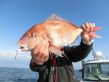 56cmを釣り上げた、くせものさんです