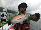 マダイ55cmを釣り上げた、浪岡からお越しの八木橋さんです