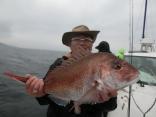 62cmを釣り上げた埼玉県川越市からお越しの菊池さんです。