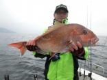 盛岡市からお越しの早坂さんが釣り上げた79cmのデカマダイ