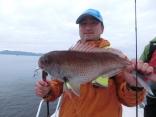 65cmのマダイを釣り上げた久慈市の大久保さんです。