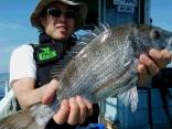 完全ふかせ釣り初挑戦で良型の黒鯛もゲット!