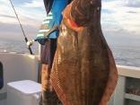 ヒラメ 6.5kg