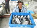 加古川市 中島さん 大漁良型アオリ4杯/モンゴ1杯/甲イカ6杯
