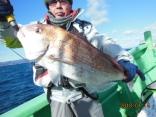 大鯛 4.7kg