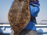 ヒラメ 8.2kg
