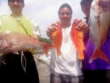 18日 半日釣行 アカハタ、真鯛 当たり多くバラシ続出
