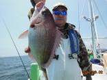 真鯛 1.1kg